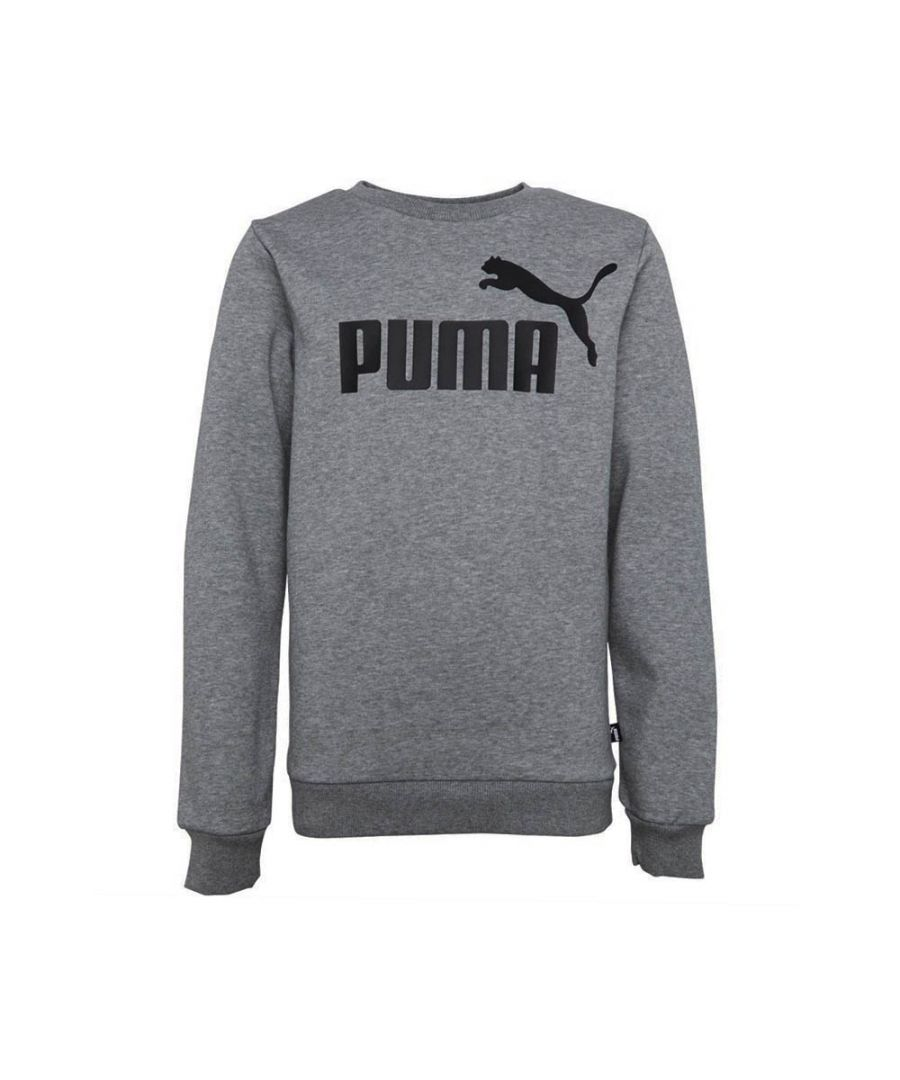 Image for Puma Essential Logo Fleece Crew Kids Sweatshirt Grey - 9-10 Years