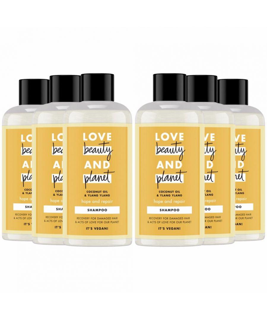 Image for Love Beauty & Planet Hope and Repair Coconut Oil & Ylang Ylang Shampoo Mini 6 x 100ml