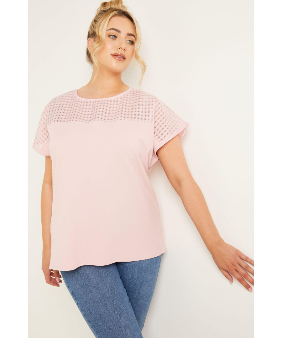 Image for Curve Pink Check Top