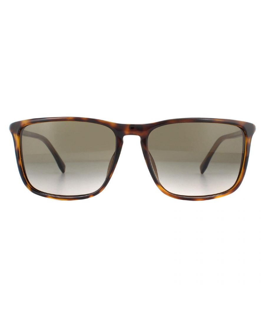 Image for Hugo Boss Sunglasses BOSS 0665/N/S 2IK HA Havana Gold Brown Gradient