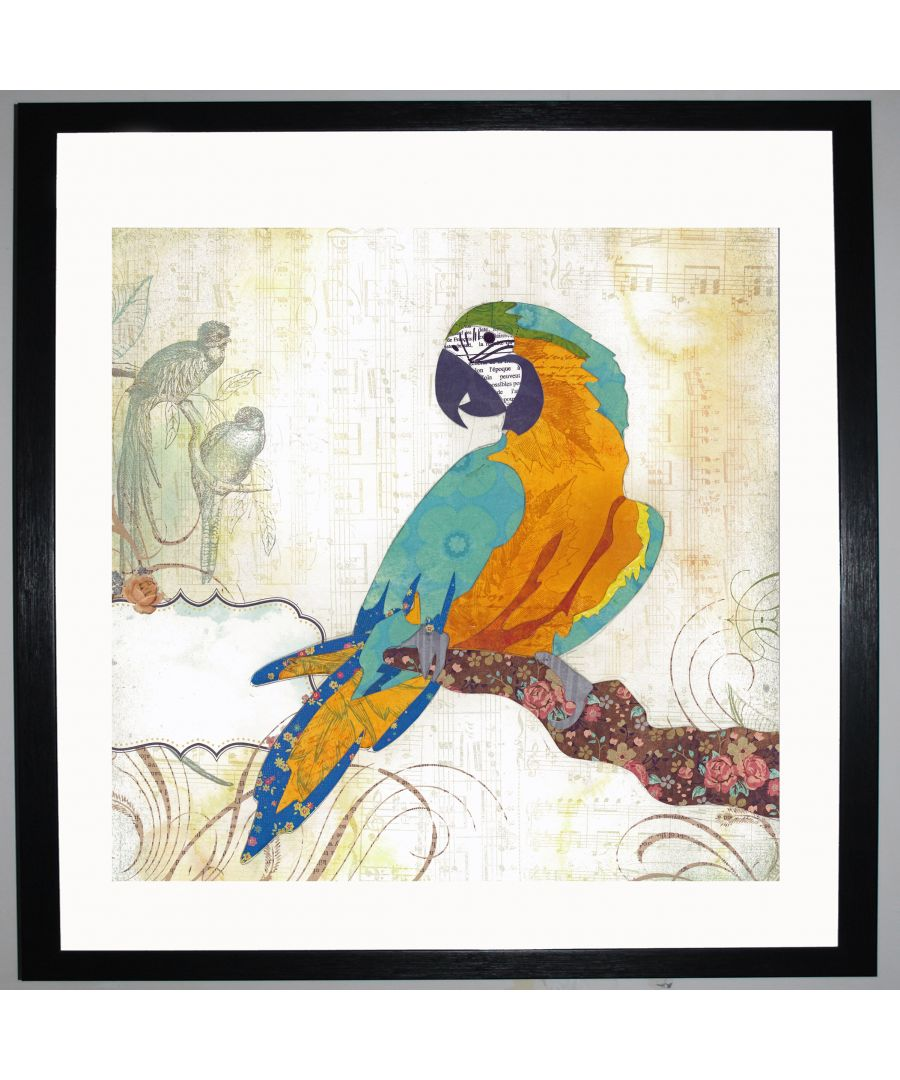 Image for Macaw by UK Collage artist and illustrator Clare Thompson