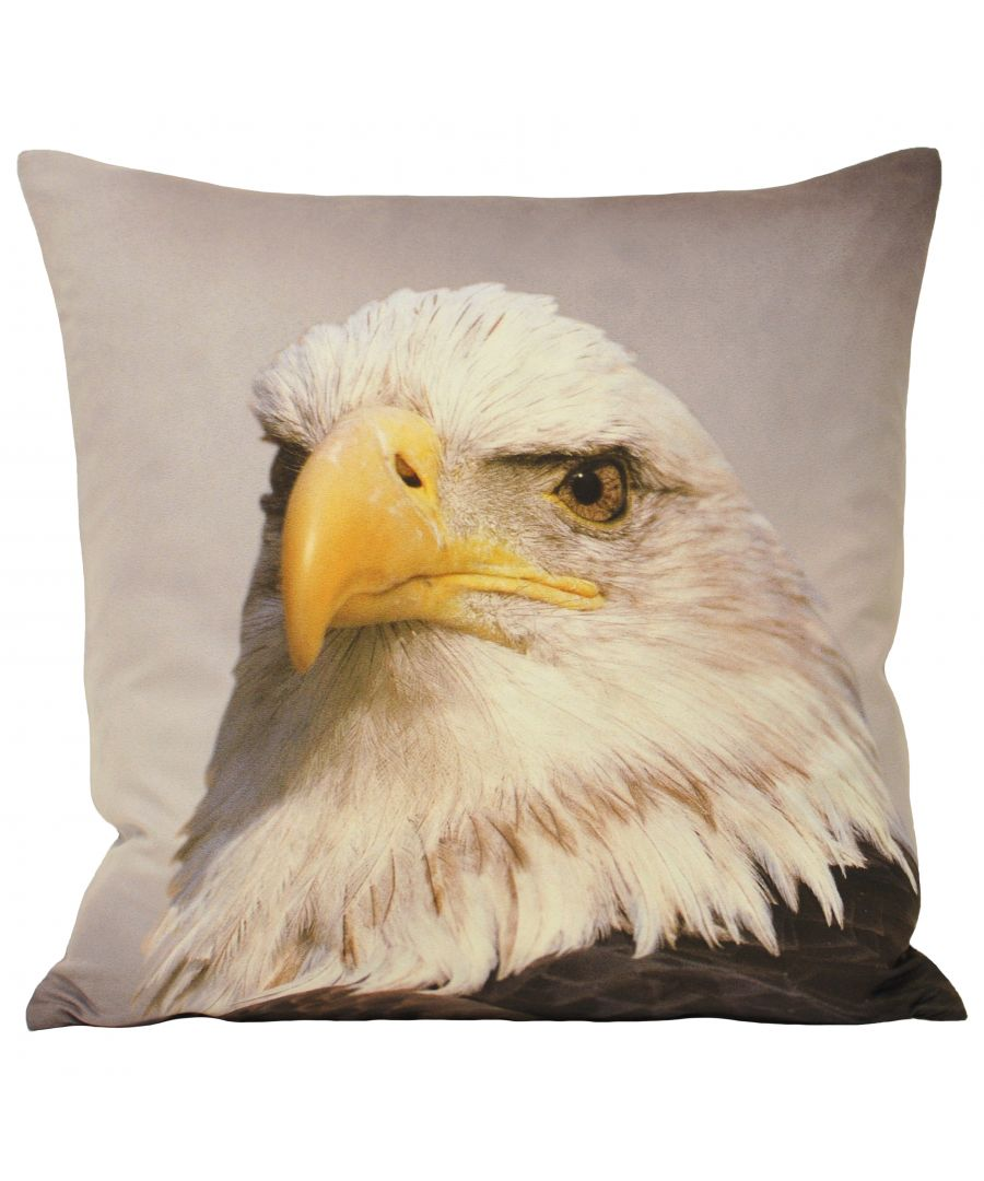 Image for Animal Eagle 45X45 Poly Cushion