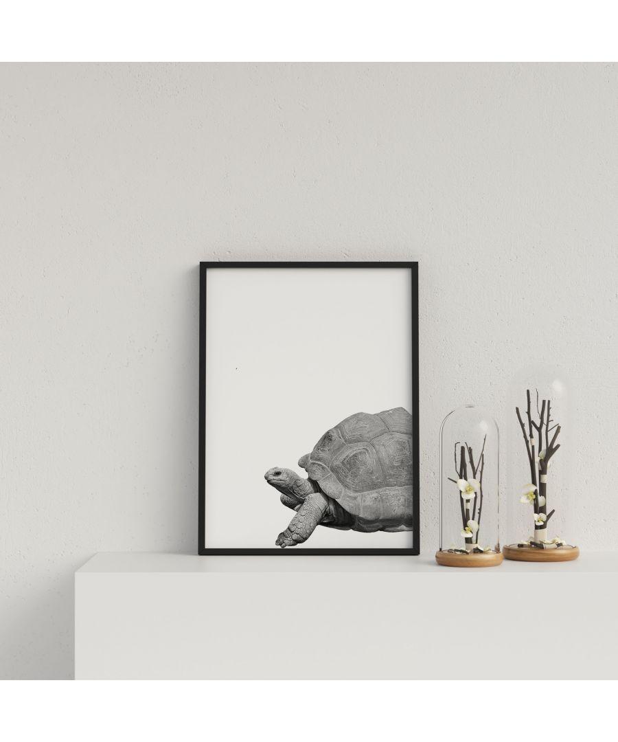 Image for Giant Tortoise on White Background - Black frame