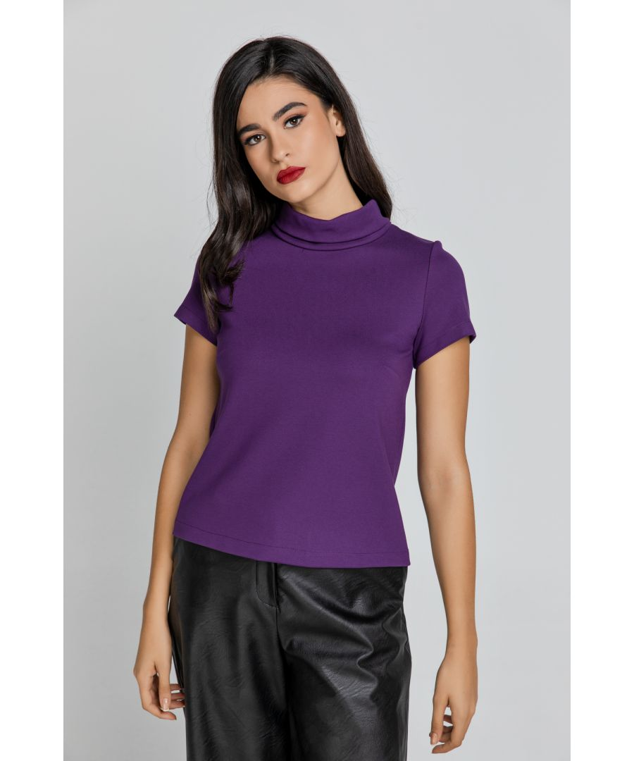 Image for Short Sleeve Mauve Top