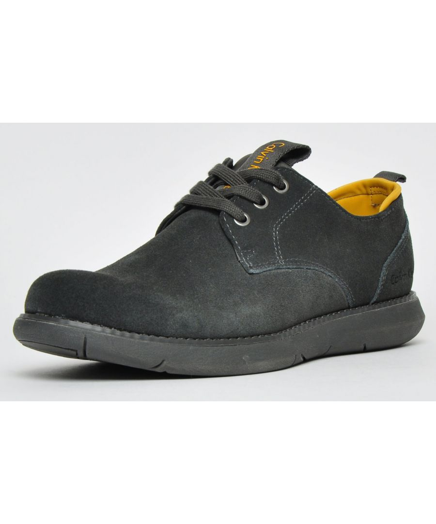 Image for Calvin Klein Toby Suede Mens