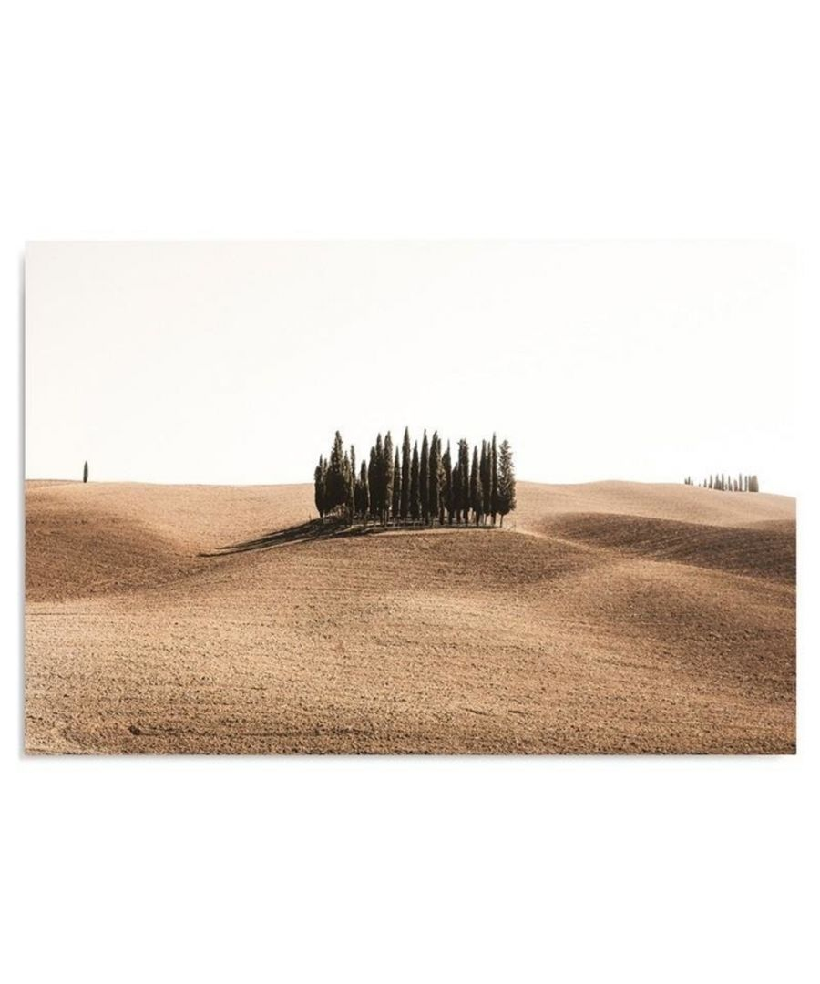 Image for Canvas Print - Cypresses In Maremma Cm. 50x70