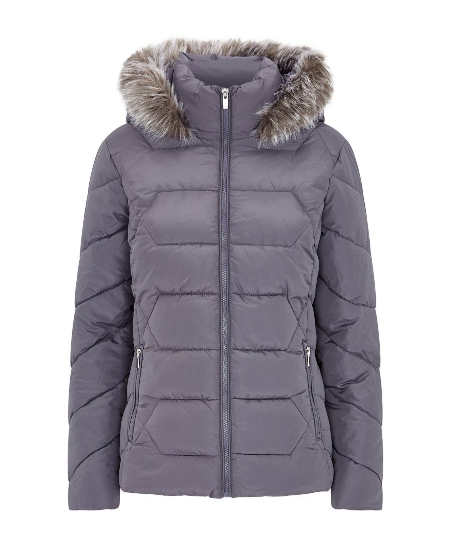 Image for Dorothy Perkins Womens Taupe Short Hooded Padded Coat Jacket Winter Warm