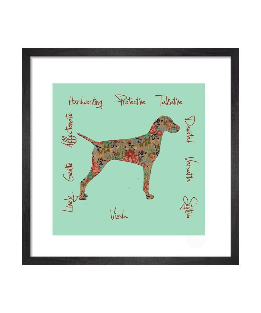 Image for Vizsla - Dog Trait