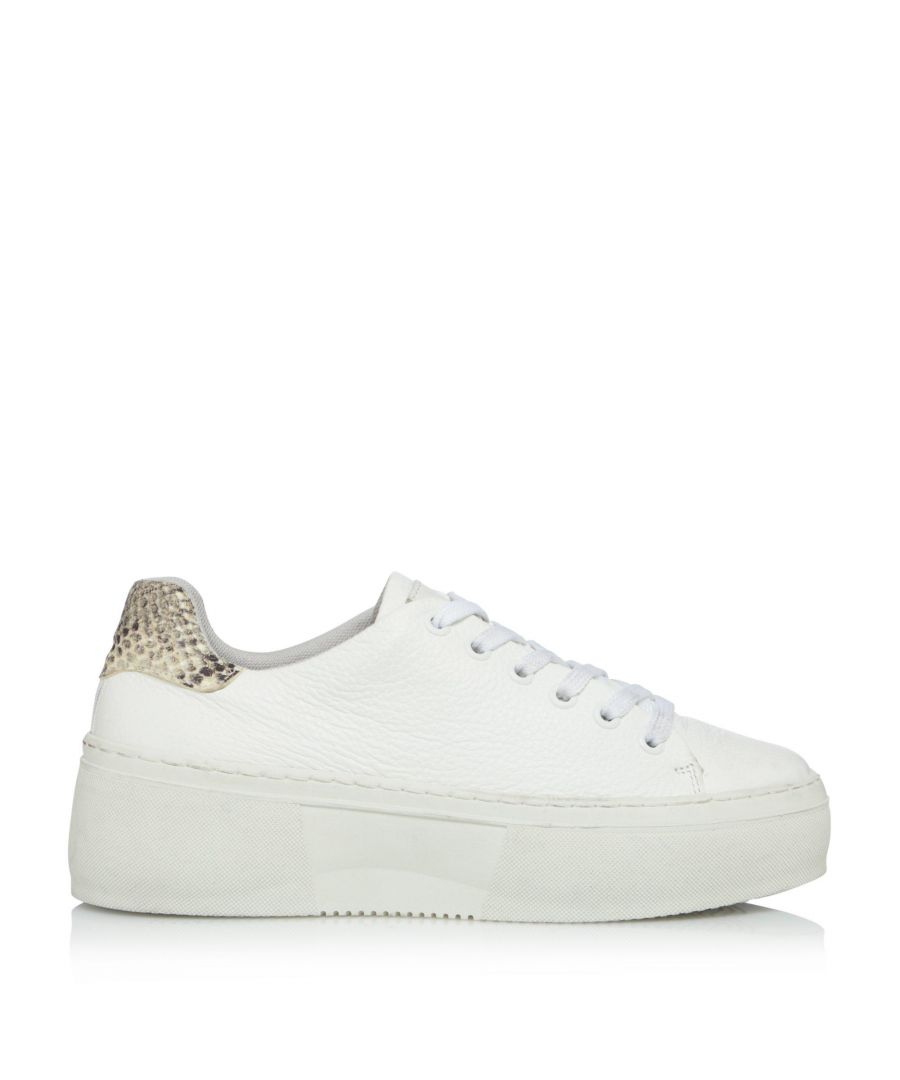 Image for Bertie Ladies ELECTAA Lace Up Flatform Trainers