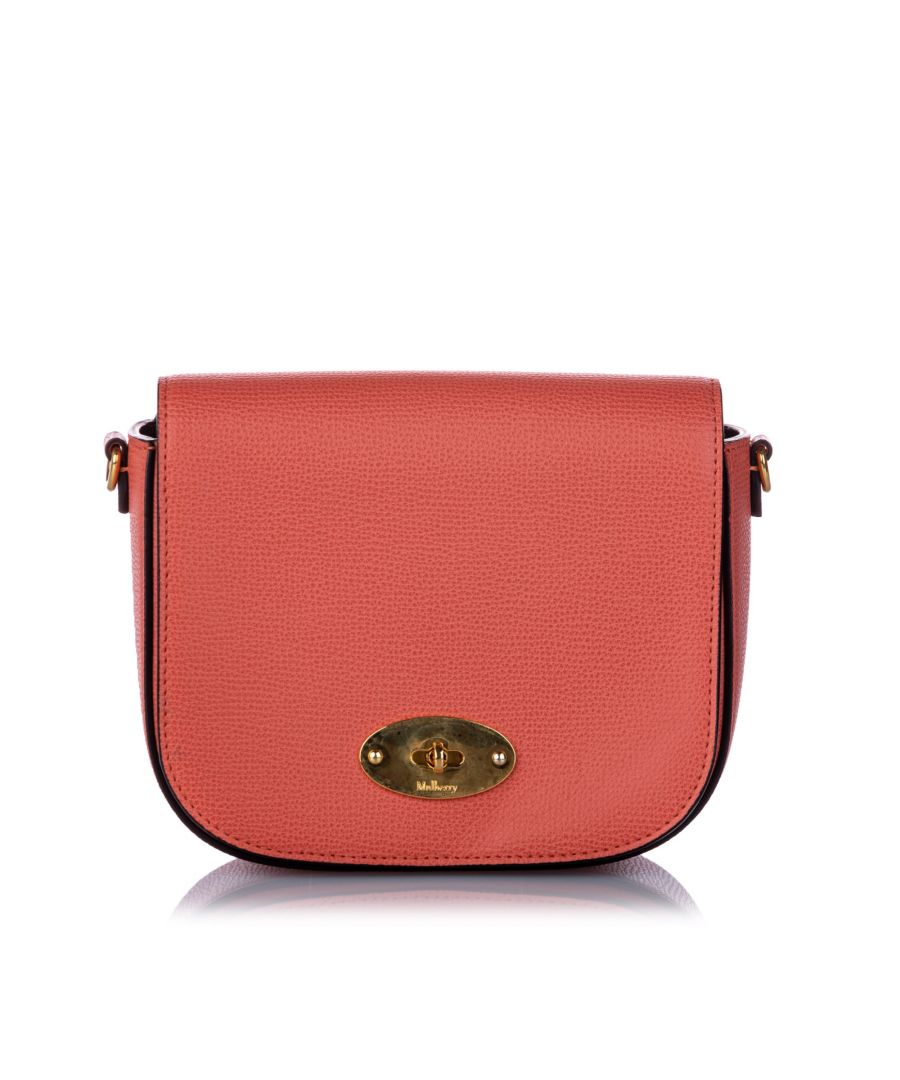 Image for Vintage Mulberry Small Darley Crossbody Bag Orange