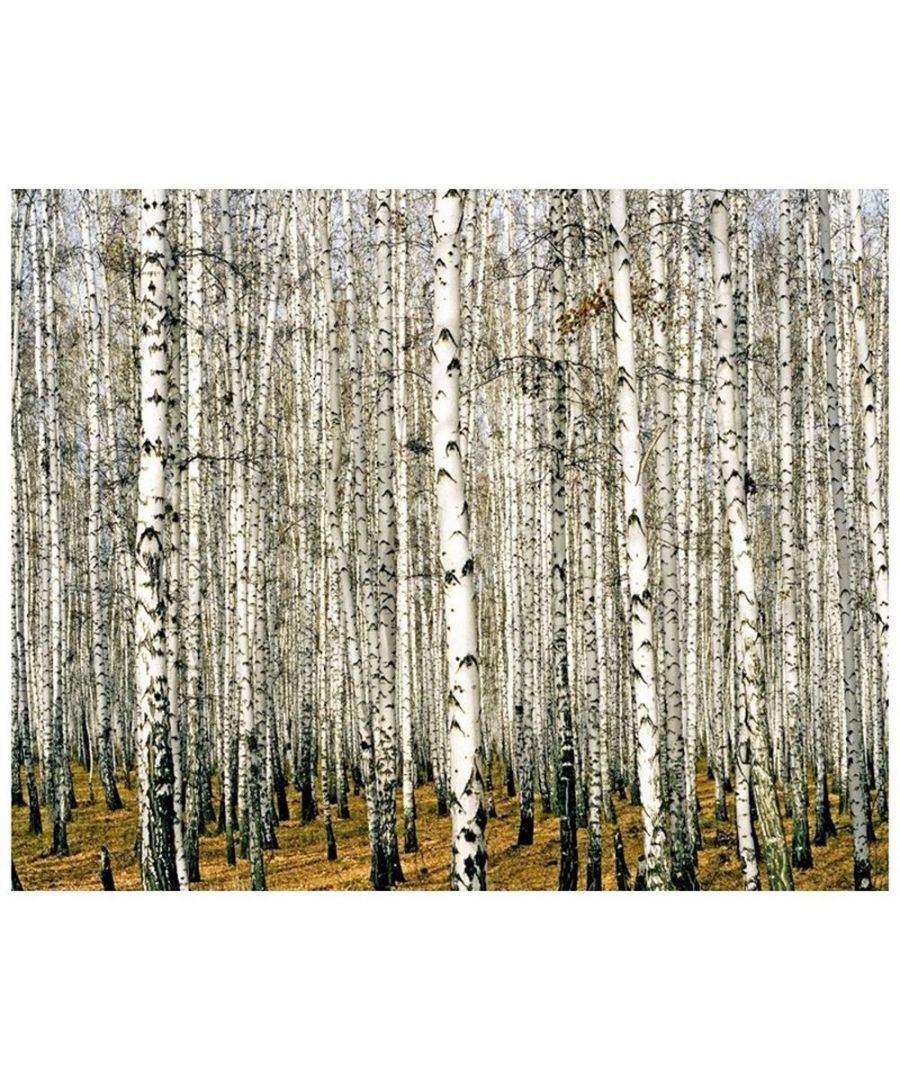 Image for Canvas Print - Forest In Winter Cm. 80x100