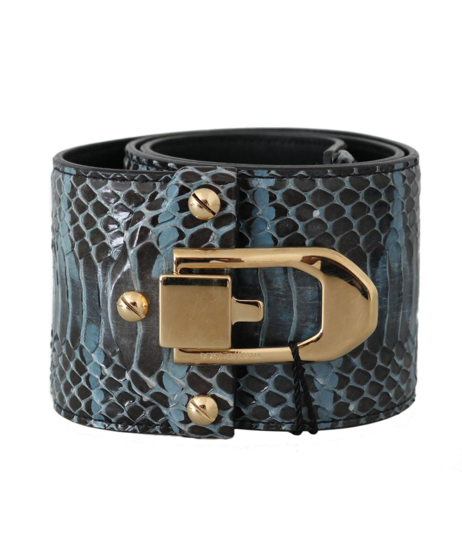 Image for Dolce & Gabbana Blue Leather Gold Buckle Wide Waist Belt