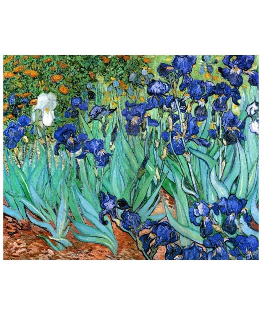Image for Canvas Print - Iris - Vincent Van Gogh Cm. 80x100