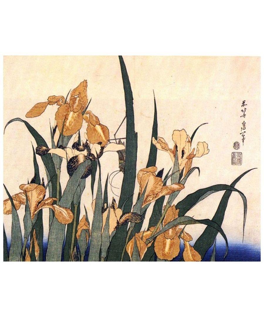 Image for Canvas Print - Irises And Grasshopper - Katsushika Hokusai Cm. 80x100