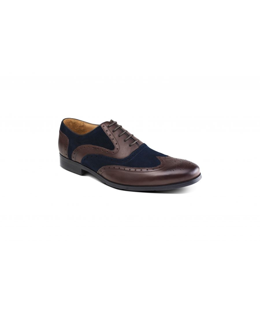 Image for Miller Brown Blue Brogue
