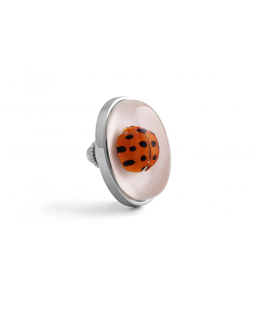 Image for Rhodium  Resin  Clear  Oval  Ladybug Deadly Creatures Pin