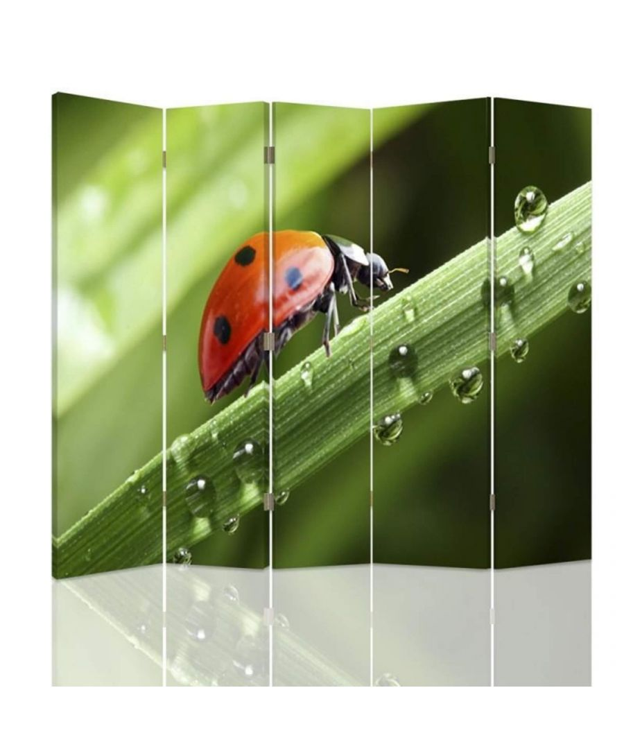 Image for Room Divider Ladybird - Indoor Decorative Canvas Screen cm. 180x180 (5 panels)
