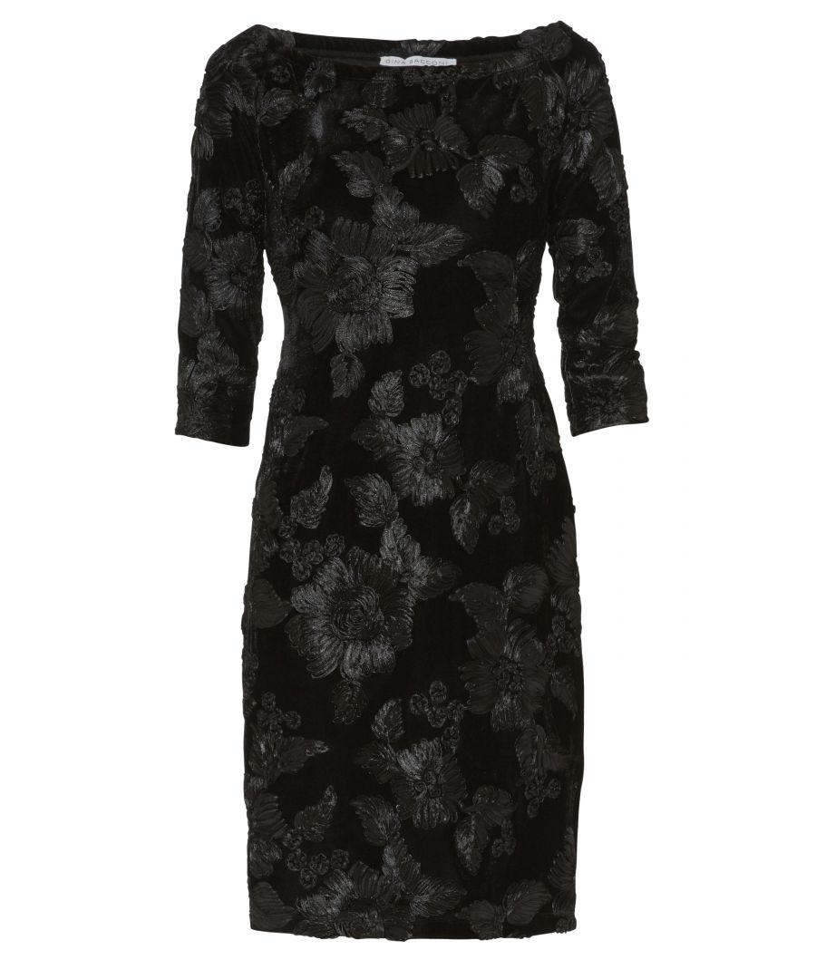 Image for Carina Embroidered Velvet Dress
