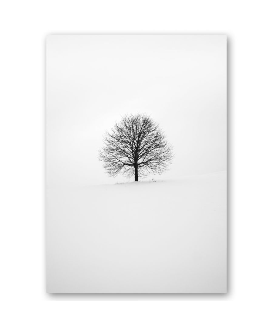 Image for Canvas Print - White Winter - Wall Art Decor