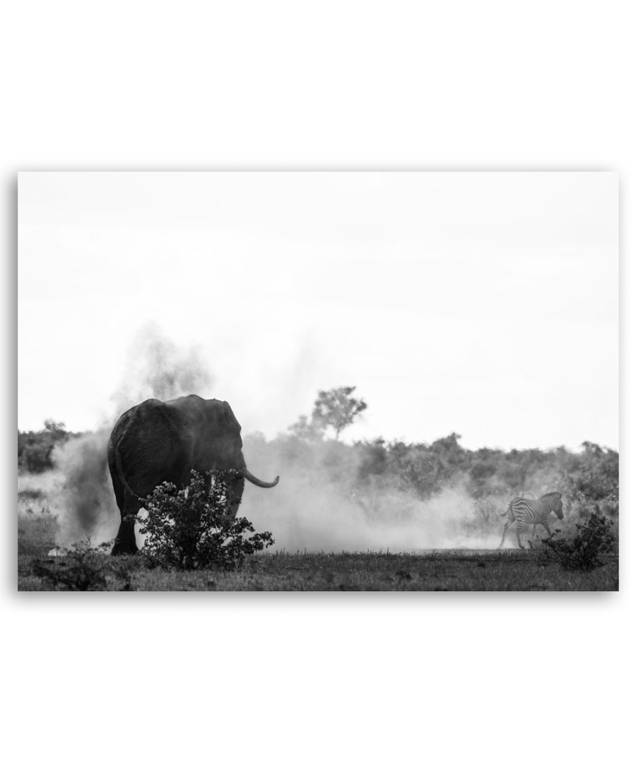 Image for Canvas Print - The Zebra And The Elephant - Wall Art Decor
