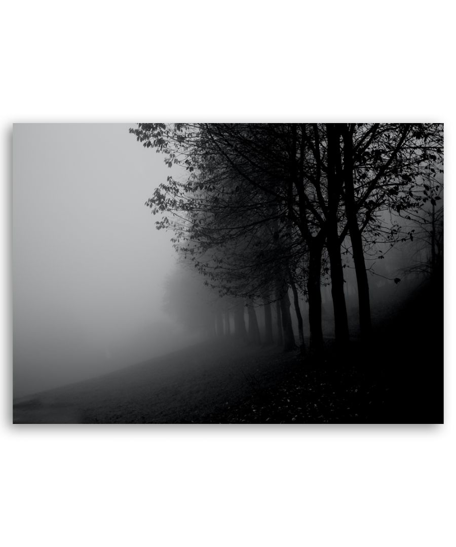 Image for Canvas Print - Fog In The Trees - Wall Art Decor