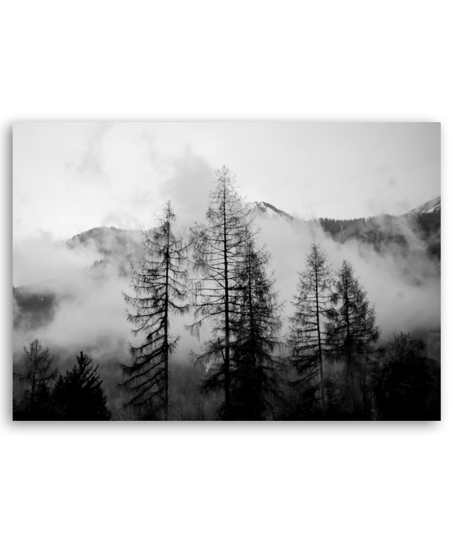 Image for Canvas Print - Pine Trees Naked In The Clouds - Wall Art Decor