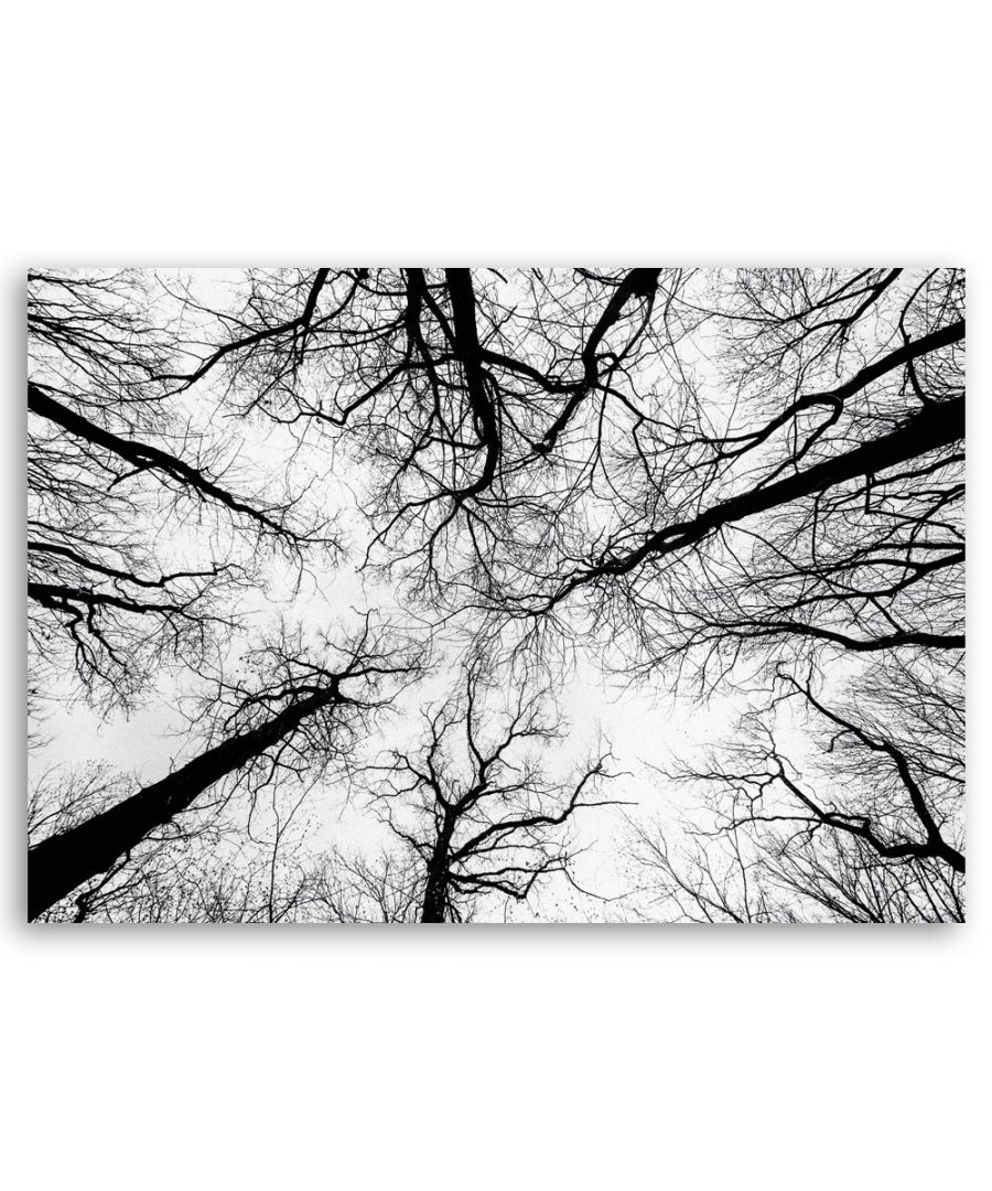 Image for Canvas Print - Bare Branches - Wall Art Decor