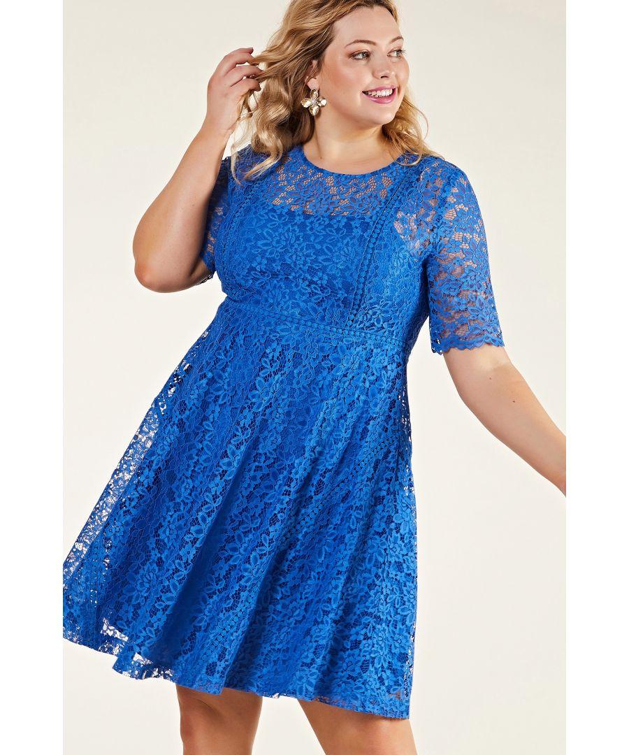 Image for Blue Plus Size Lace Party Skater Dress