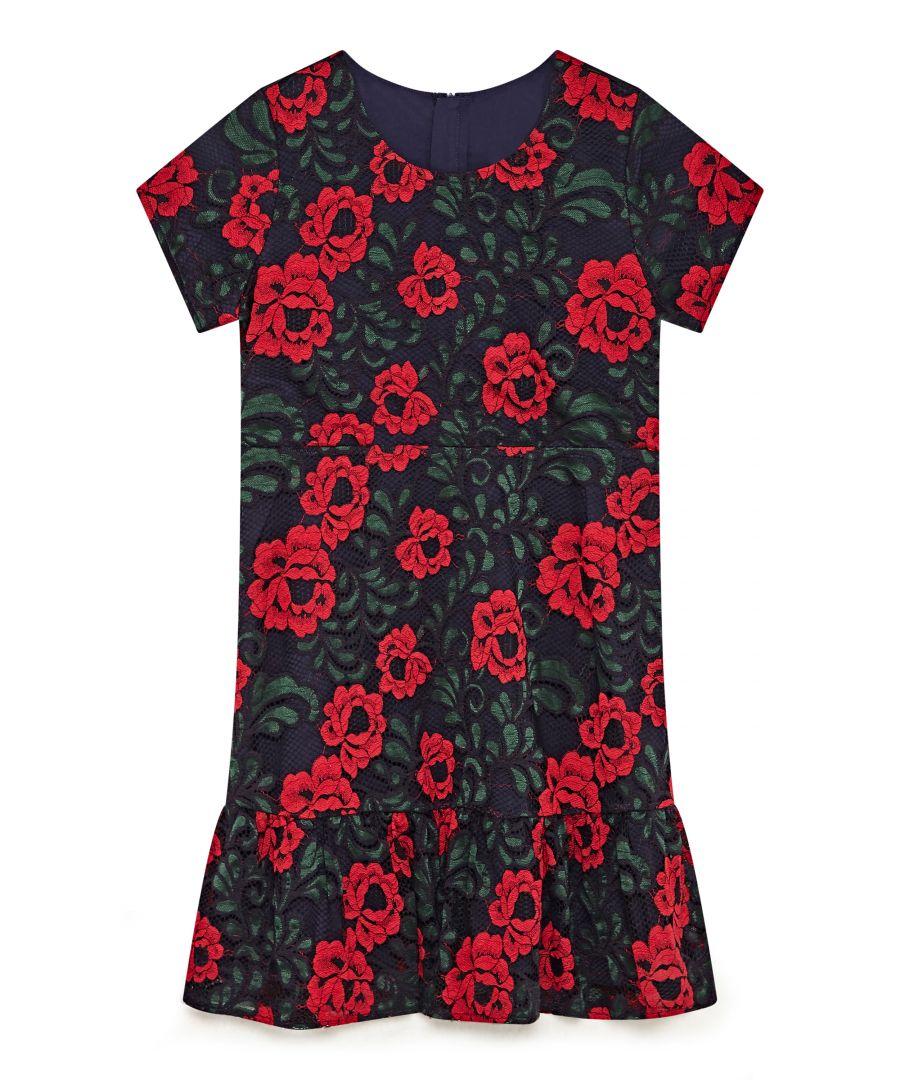 Image for Rose Multicolour Lace Dress