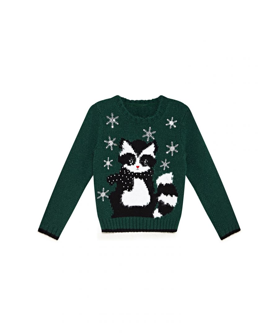 Image for Yumi Girls Racoon Jumper