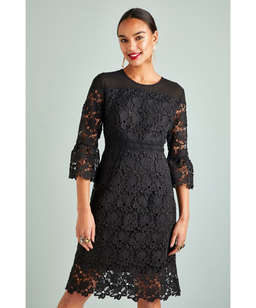 Image for Lace Panel Dress With Fluted Sleeves