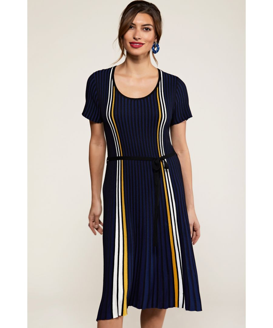 Image for Navy Stripe Knit Pleated Dress