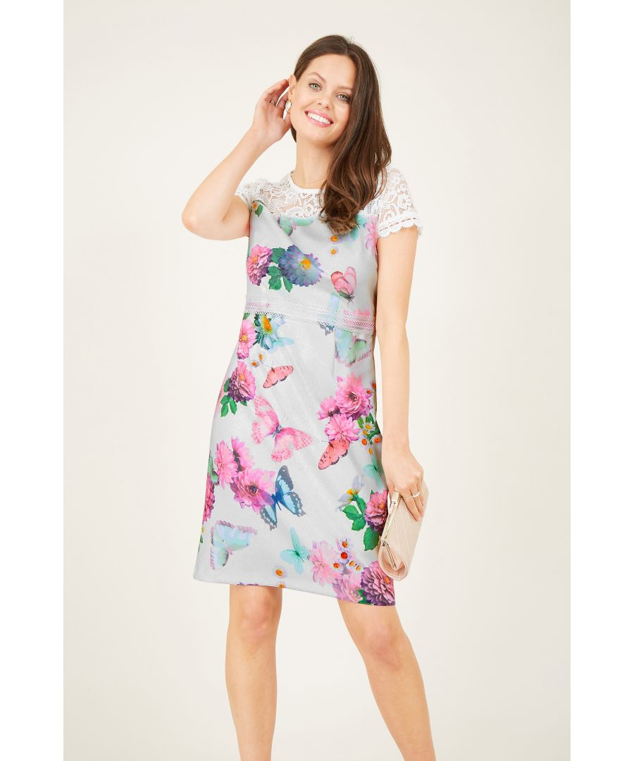 Image for Butterfly Printed Fitted Dress With Lace