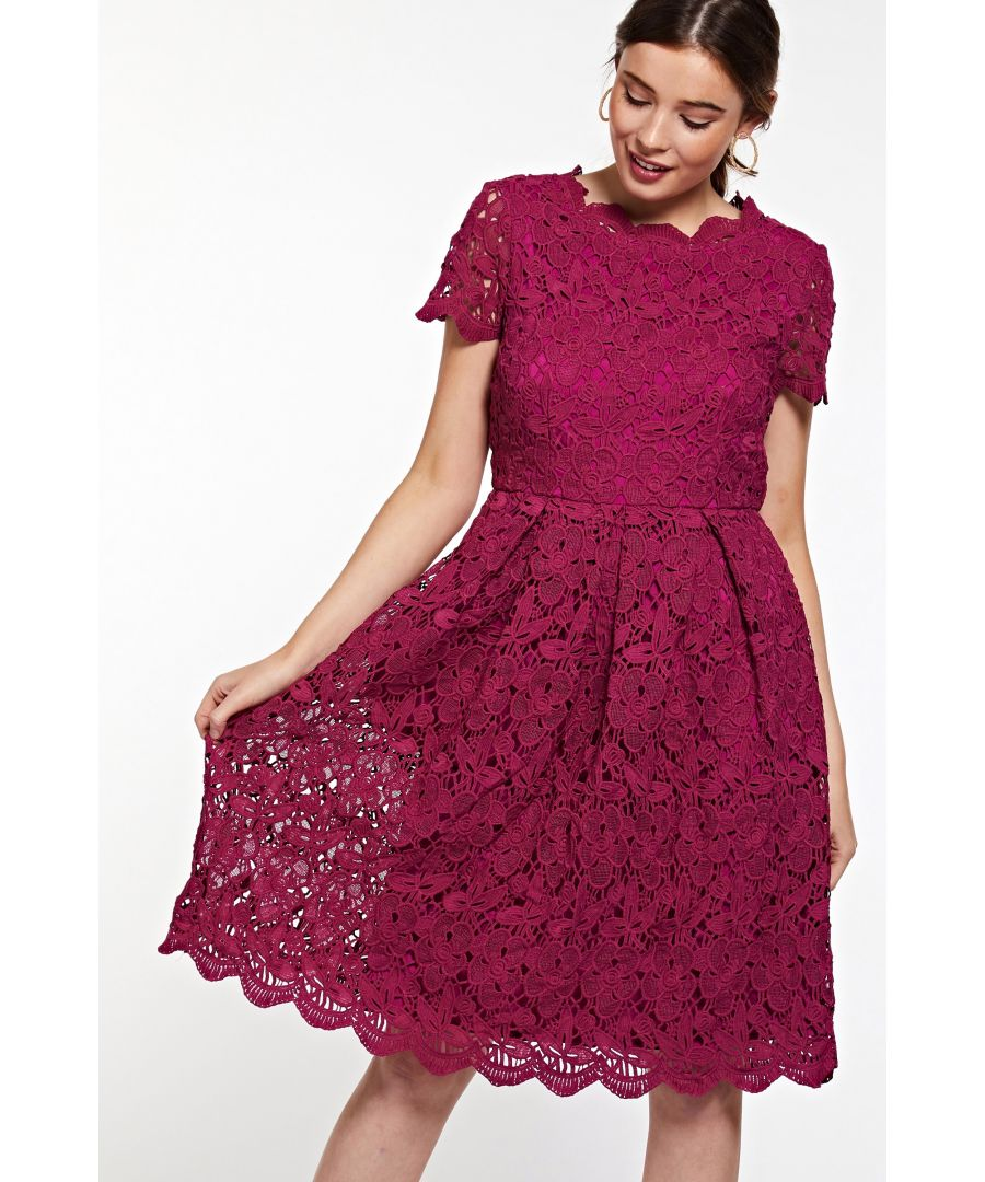 Image for Plum Guipure Lace Fit And Flare Dress