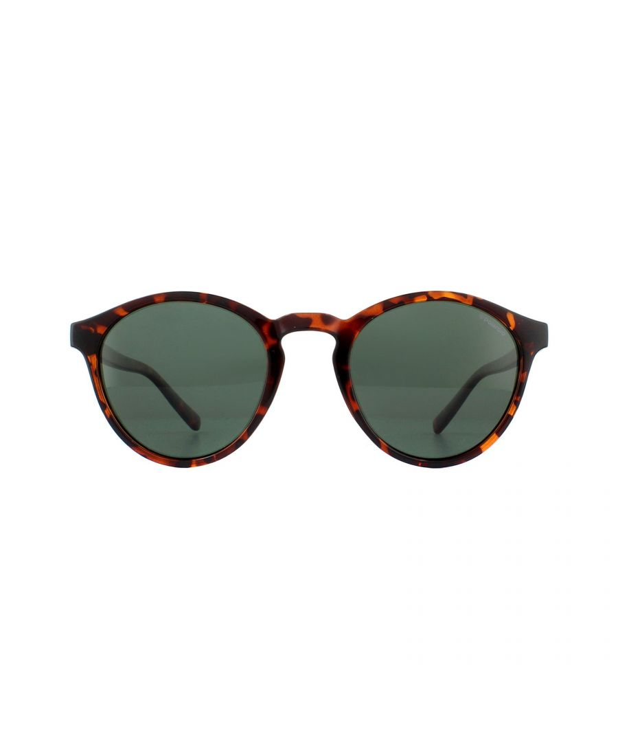 Image for Polaroid Sunglasses PLD 1013/S V08 H8 Havana Green Polarized