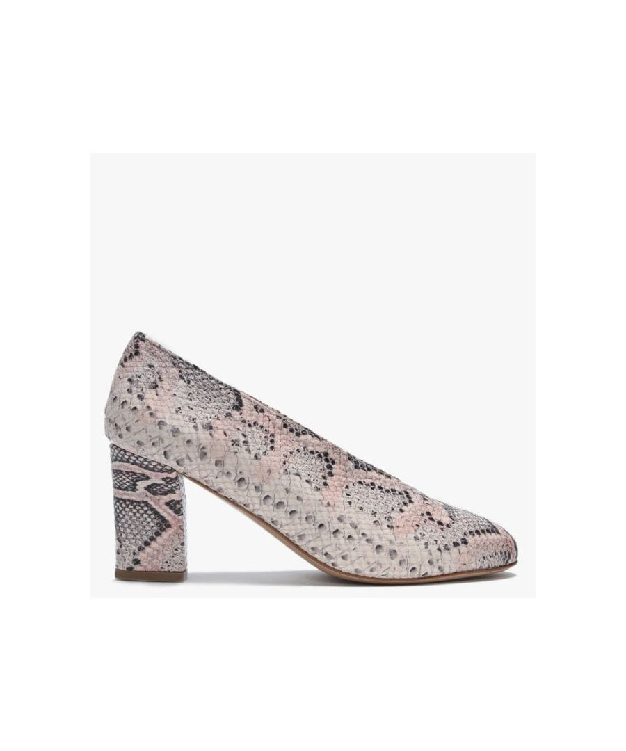 Image for Daniel Aneso Leather Reptile V Front Court Shoes