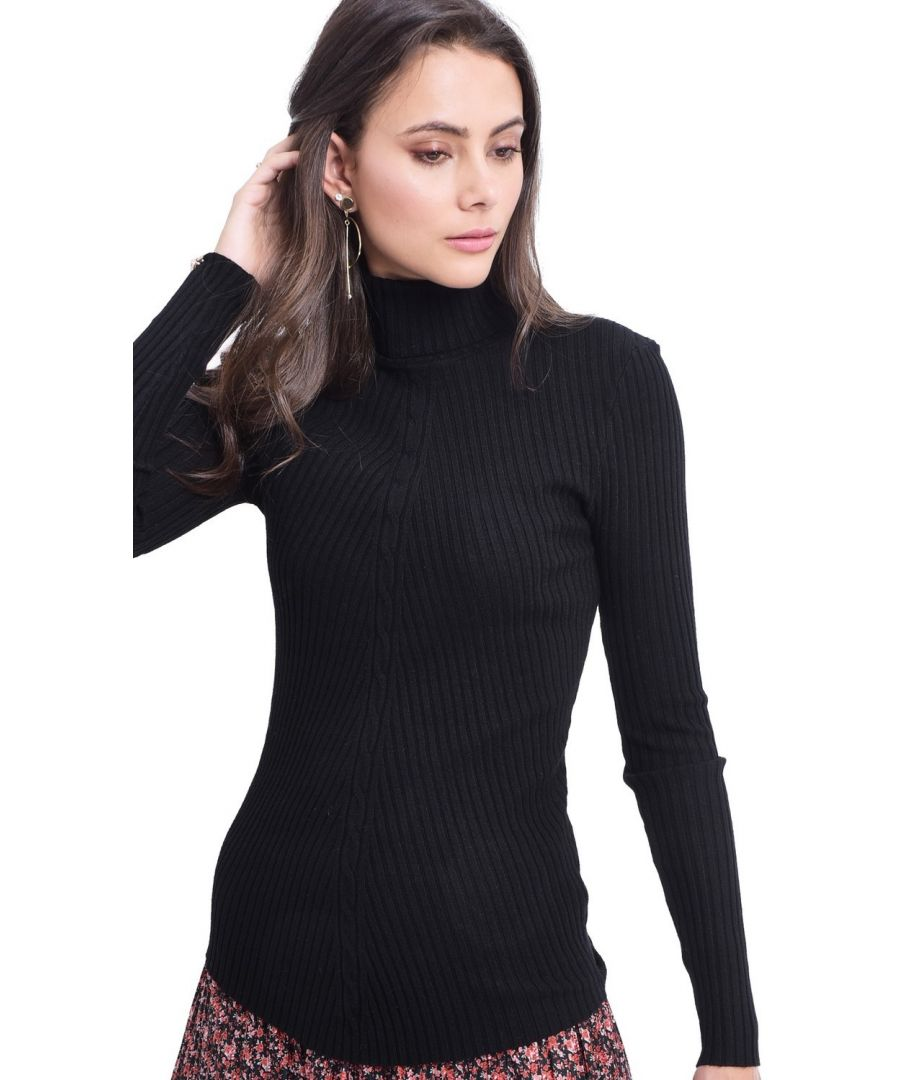 Image for Assuili Turtleneck Twisted Yarn Front Sweater in Black