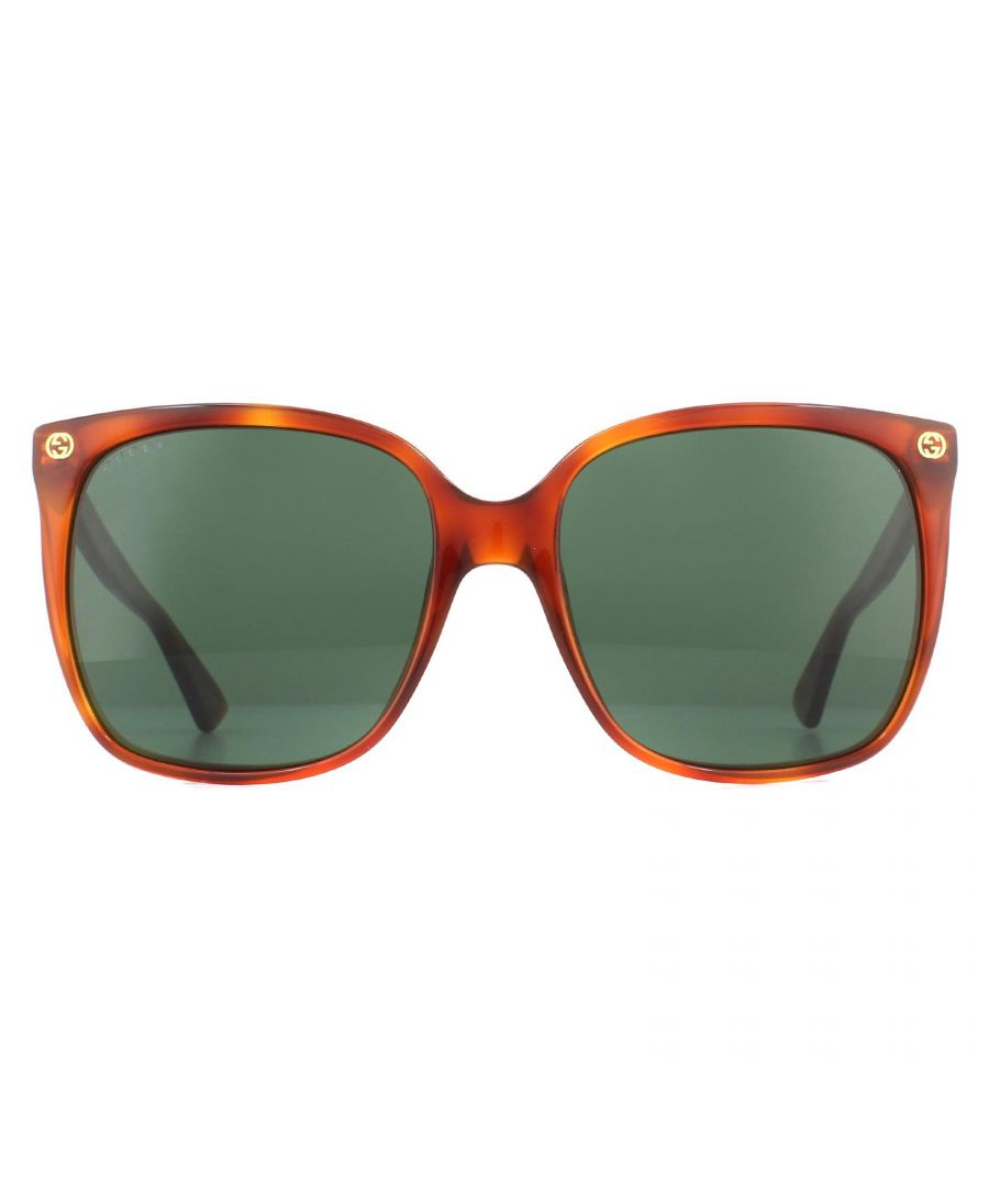 Image for Gucci Sunglasses GG0022S 002 Havana Green