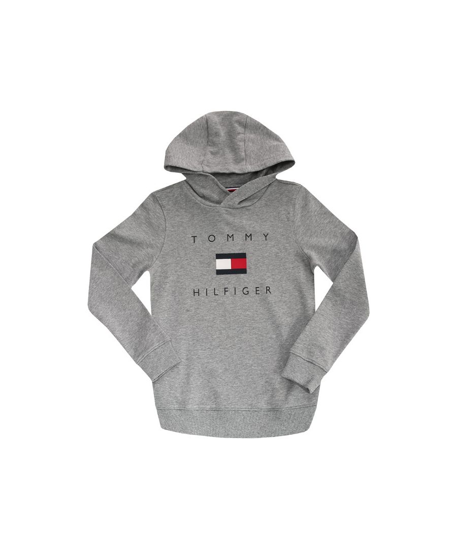 Image for Boy's Tommy Hilfiger Junior Chest Logo Hoody in Grey Heather