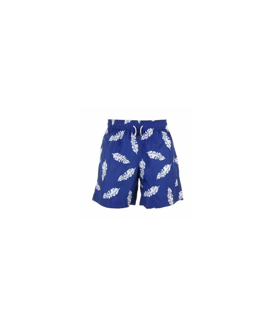 Image for Boys's Blue & White Leaf Swim Shorts