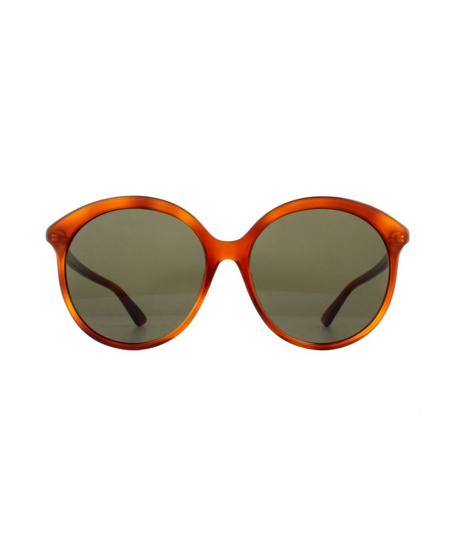 Image for Gucci Sunglasses GG0257S 002 Havana Brown