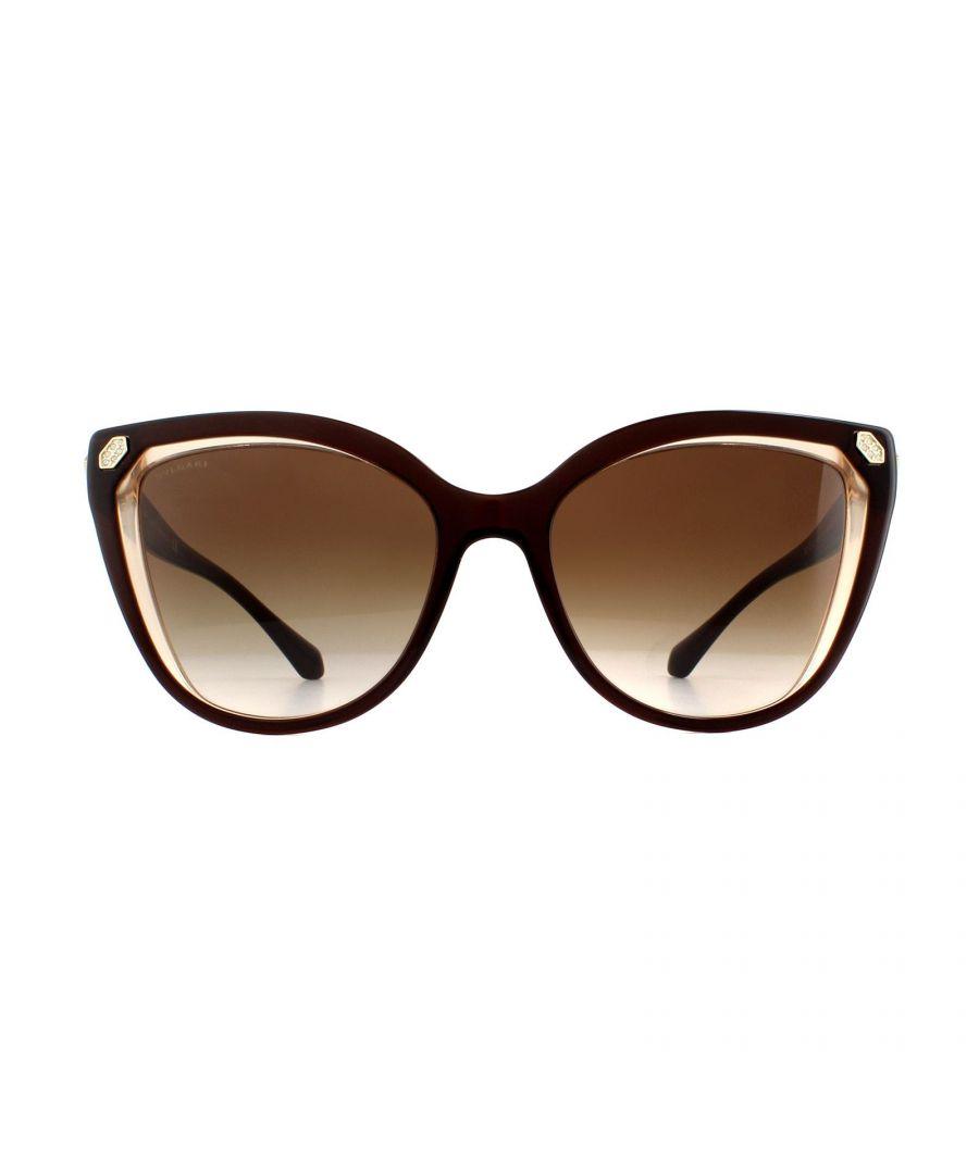 Image for Bvlgari Sunglasses BV8212B 547213 Brown on Transparent Brown Brown Gradient