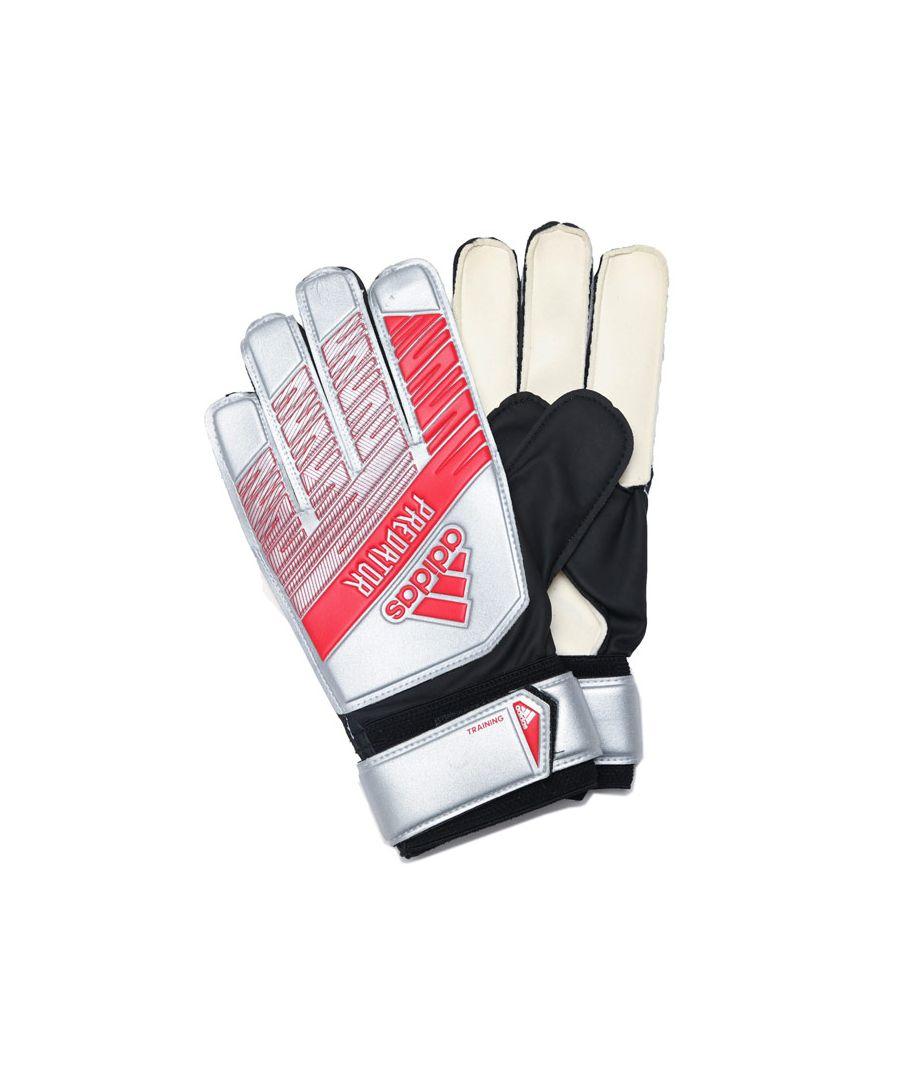 Image for adidas PRedator Training Goalkeeper Gloves in Silver Black