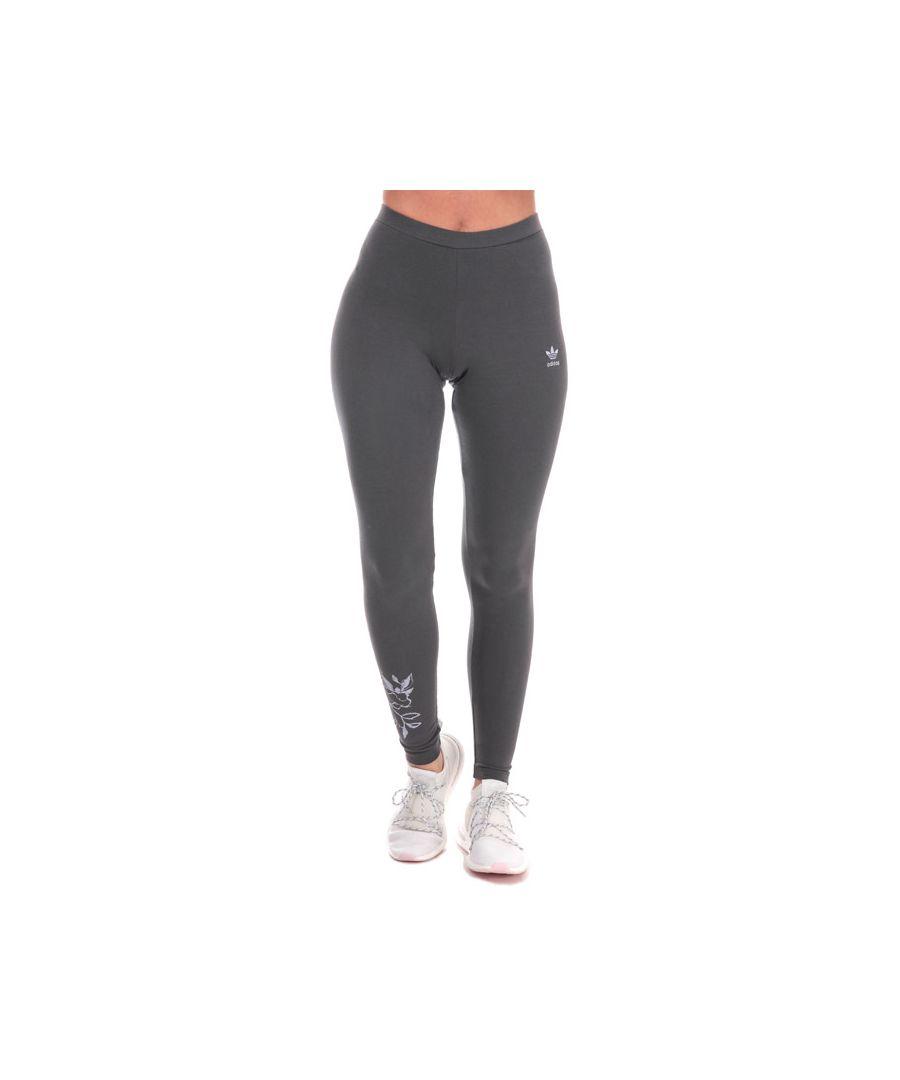 Image for Women's adidas Originals Leggings in Grey