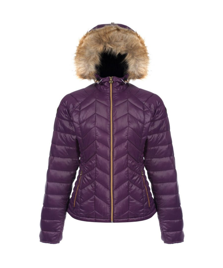 Image for Dare 2b Womens/Ladies Endow Water Repellent Nylon Ski Jacket