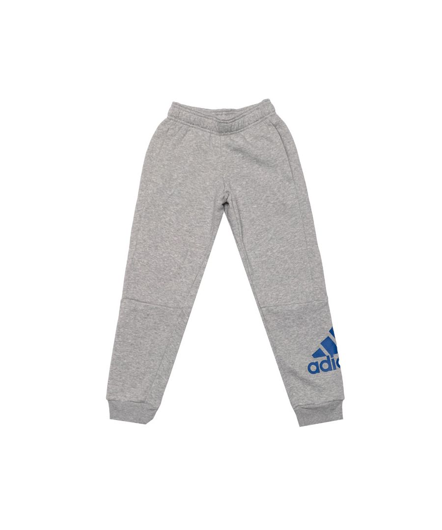 Image for Boy's adidas Junior Must Have Jog Pant in Grey