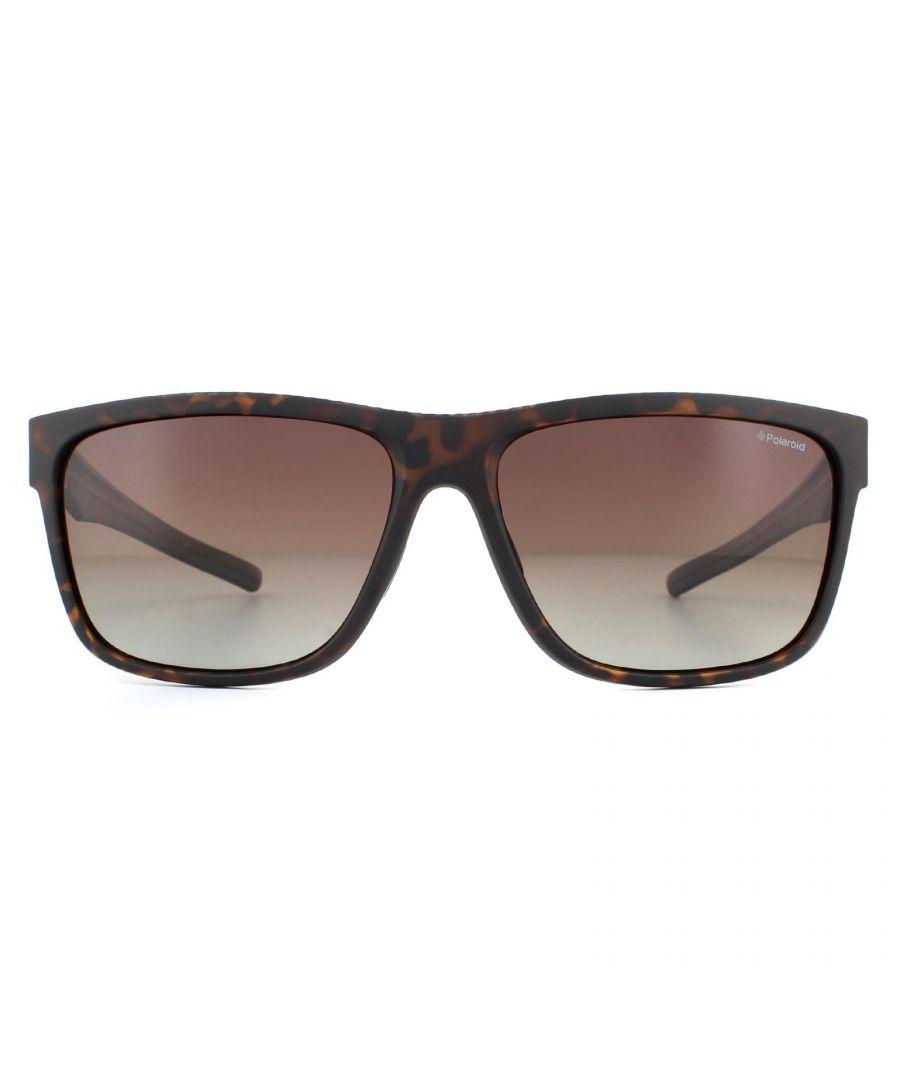 Image for Polaroid Sport Sunglasses Pld 7014/S 086 La Dark Havana  Brown Gradient Polarised