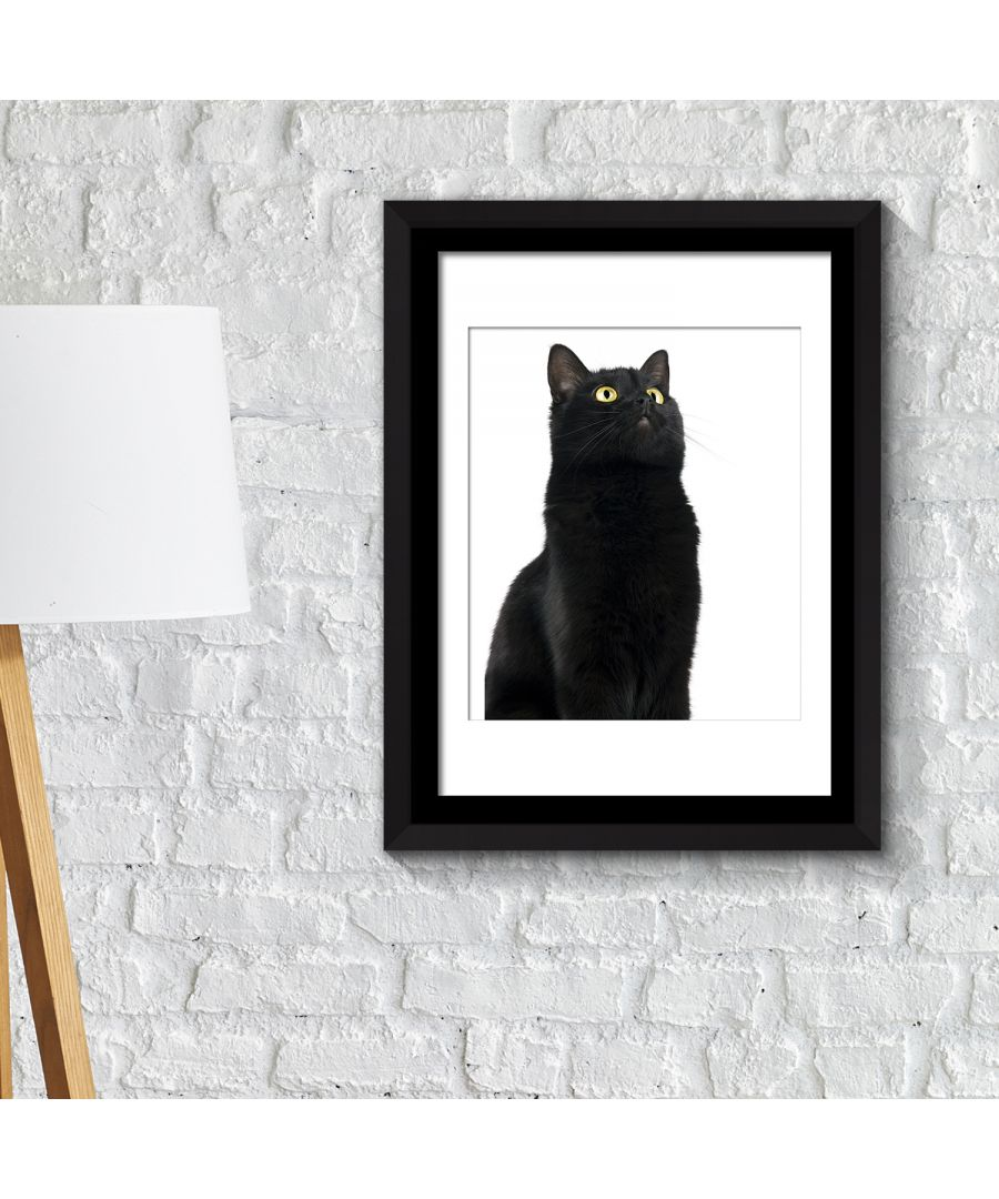 Image for FA2122 - COM - WS2122 + FR030 - Framed Art 2in1 Cute Black Cat Poster
