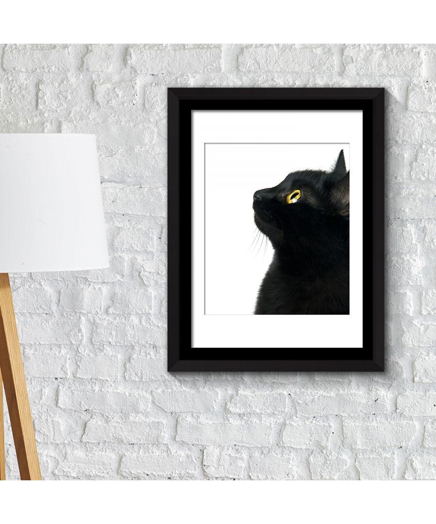 Image for FA2123 - COM - WS2123 + FR030 - Framed Art 2in1 Poster - Black Cat focus