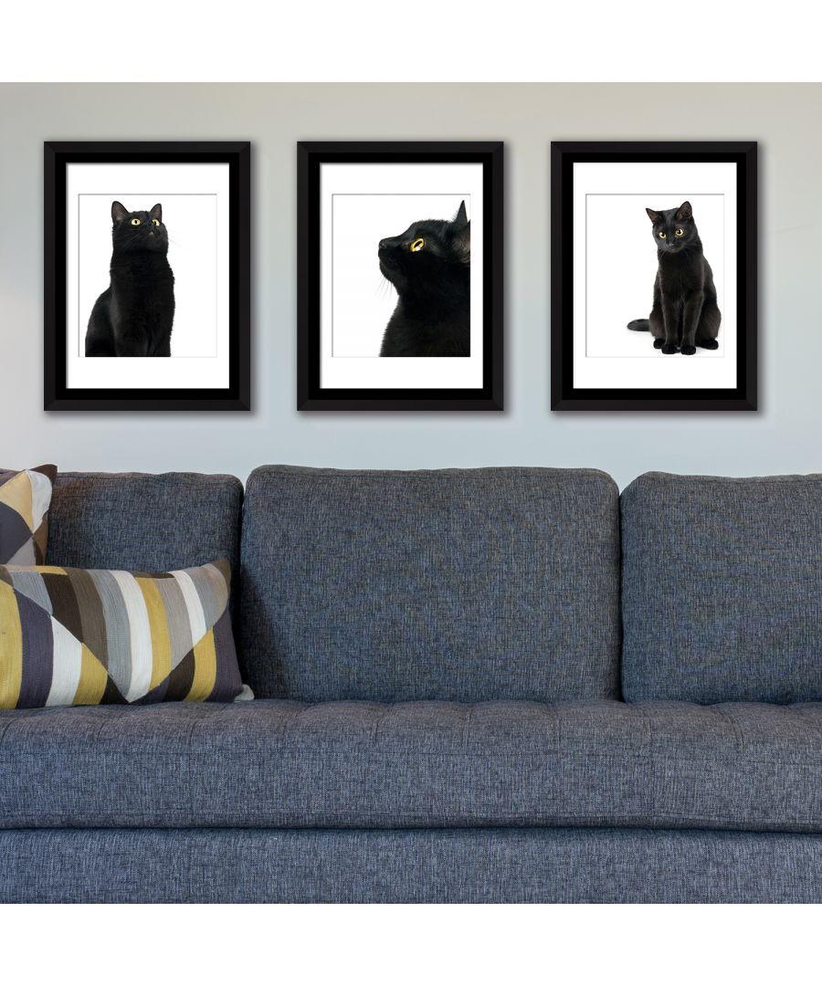 Image for FA5059 - COM - WS2124 + WS2123 + WS2122 + FR030 - Framed Art Black Cat
